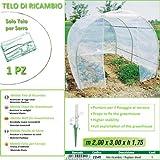 Betty Garden Telo NEW Ricambio per Serra (200 x 300 x h 175 cm) modello Metide - Teli per Serre