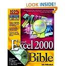 Microsoft Excel 2000 Bible