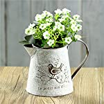 French Style White Shabby Chic Mini Metal Pitcher Flower Vase with Vintage Bird Decorative,Wrought iron Manual Plants Vase with Classical