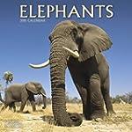 Elephants Calendar - 2015 Wall calend...