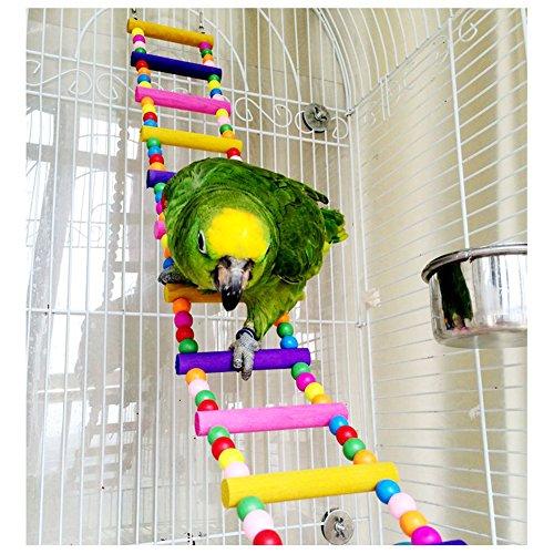 echelle escalier jouet d 39 oiseaux multicolore pour perroquet perruche en bois 80cm. Black Bedroom Furniture Sets. Home Design Ideas