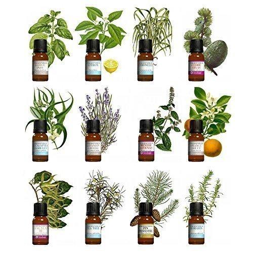 kit-aromatherapie-lot-de-12-huiles-essentielles-10ml-100-pures-et-naturelles-qualite-france