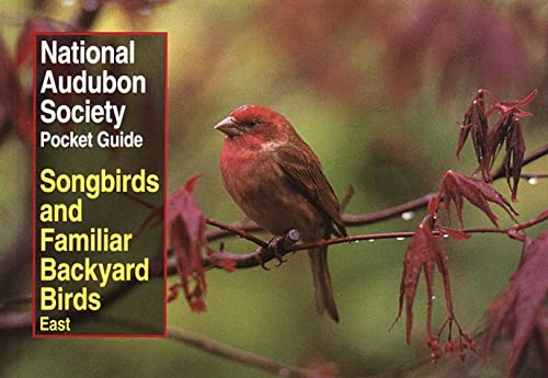 NAS Pocket Guide to Songbirds and Familiar Backyard Birds: Eastern Region (National Audubon Society Pocket Guides)