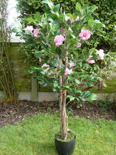 uk-gardens-pianta-artificiale-di-camelie-in-vaso-di-resina-ultra-resistente-adatta-per-interni-122-m