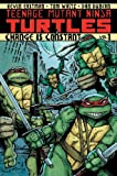 Teenage Mutant Ninja Turtles Volume 1: Change is Constant