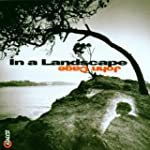 In a Landscape--Ambient Music of John...