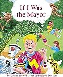 If I Was The Mayor