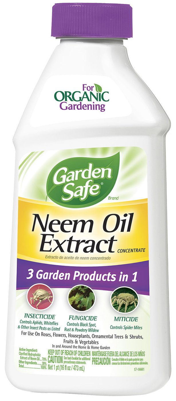 Garden Safe Concentrate  Neem Oil, 16-Ounce