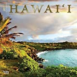 Hawaii 2015 Wall Calendar