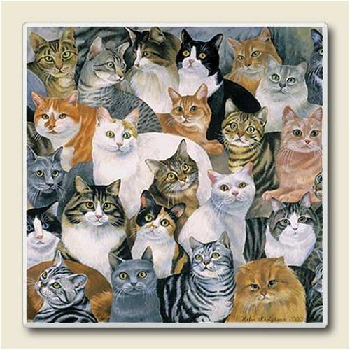 AbsorbaStone Coaster set~ just Cats ~ 4 Tile Drink Coasters ~ code 762