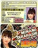 AKB48ファン免許証(高橋みなみ)