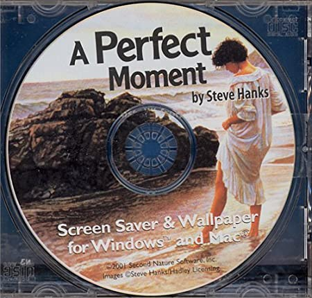 Perfect Moment By Steve Hanks (Jewel Case)