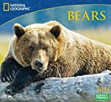 2014 National Geographic Bears Deluxe Wall