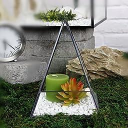 Noah Decoration Retropyramid Succulent/ Air Plants Glass Terrarium/ Candle Holder Black