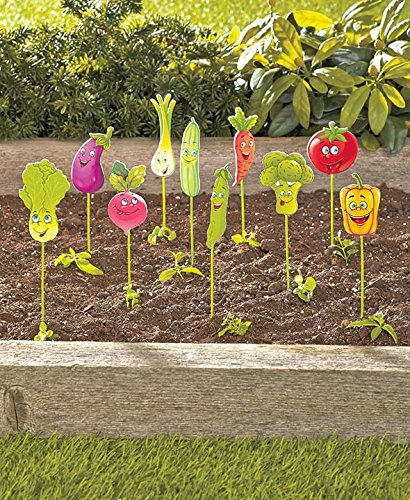 set-of-10-vegetable-garden-markers