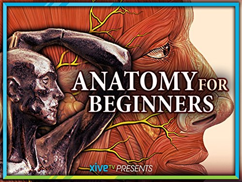 Anatomy for Beginners: Season 1