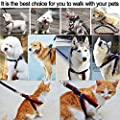 Dog Collars Harnesses & Leashes, 5ivepets No Pull Dog Harness Denim Dog Collar for Small/Medium/Large Dogs, Dog Training Leash Collar for Dog Walking Running