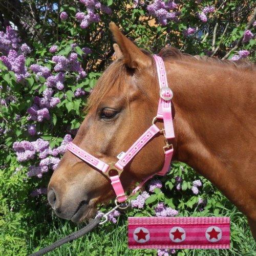 Speeda Halfter Pink Stars Cob/Vollblut