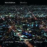echange, troc Mark Feldman, Tom Rainey - What Exit