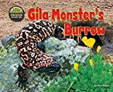 Gila Monster's Burrow (Science Slam: The Hole Truth)