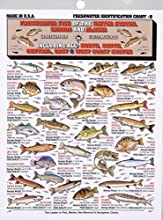 Tightline Publications Freshwater Identification Chart - Great For Beginners