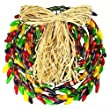 150 Bulbs - Multi-Color Chili Pepper Wreath - 14 in. Diameter - Green Wire - 120V