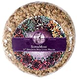 "SuperMoss (22341) Sphagnum Moss Living Wreath 11"" - Round, Natural"