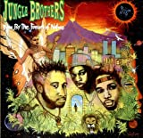 Jungle Brothers Done By The Forces Of Nature [VINYL]