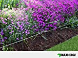 Decorative Lawn Edging – Regency