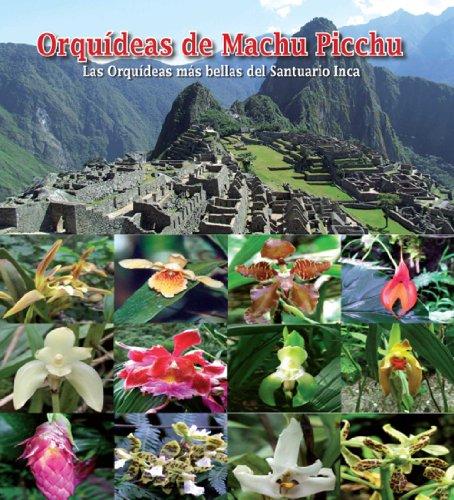 Orquideas de Machu Picchu