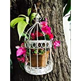 The Garden Store Birdcage Planter