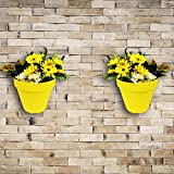 Wonderland Set of 2 High Quality PP Wall mounted & vertical garden planter / pots in Yellow ( Nail & accessories included)