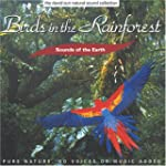 Birds in the Rainforest