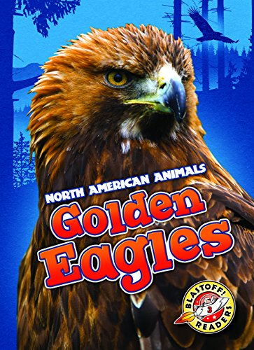 golden-eagles-north-american-animals