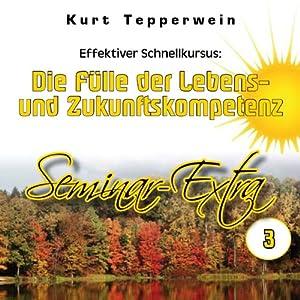 Effektiver Schnellkursus: Die Fülle der Lebens- und Zukunftskompetenz (Seminar Extra 3) Hörbuch