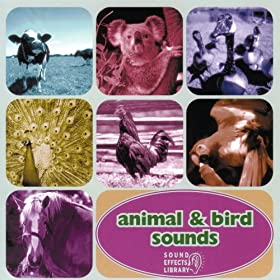 Animal & Bird Sounds