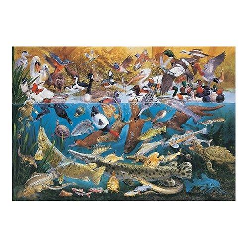 Jumbo-Cool-Waters-1000-Piece-Jigsaw-Puzzle