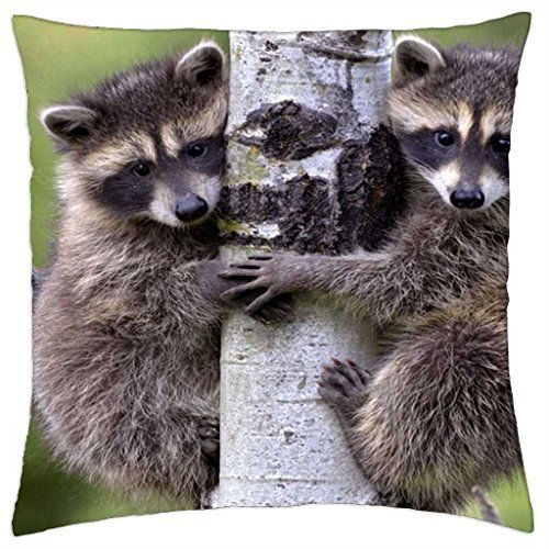 mike-and-ike-throw-pillow-cover-case-16