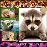 """Baby Animals - The Cutest of the Cute"" (Our Big Wide World!)"