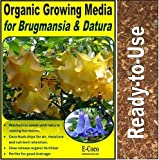 BRUGMANSIA & DATURA COMPOST (5 LITRES) FOR ANGEL'S TRUMPETS AND MOONFLOWERS - READY TO USE