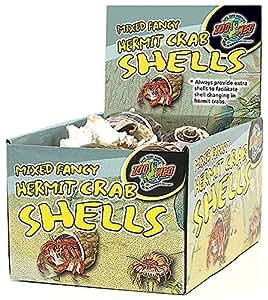 Amazon.com : Zoo Med Labs Hermit Crab Shells : Pet Care ...