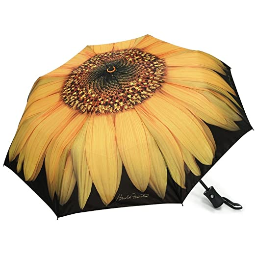Harold Feinstein Auto Open and Close Sunflower Collapsible Compact Umbrella