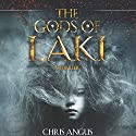 The Gods of Laki: A Thriller (       UNABRIDGED) by Chris Angus Narrated by Molly Elston