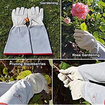 Euphoria Garden Thornproof Leather ROSE GARDENING Gauntlet Gloves – Medium