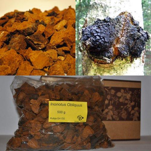 Chaga Dried Chunks 1,102 Lb.(500G.)
