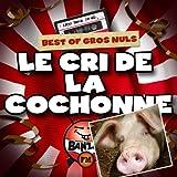 Best Of Gros Nuls : Le cri de la cochonne (Radio Banzaï) [Explicit]