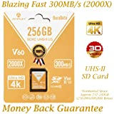 256GB V60 UHS-II SDXC SD Card - Amplim Blazing Fast 300MB/S (2000X) UHS2 Extreme High Speed 256 GB/256G SD XC Memory Card. 4K 8K Video Camera UHSII Card for Fujifilm, Nikon, Olympus, Panasonic, Sony (Color: V60 256GB, Tamaño: 256GB)
