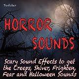Resurrection of the Vampire: Church Bell, Thunderstorm, Organ Sound, Vampire - Background Horror Sound Atmosphere Halloween