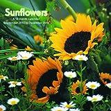 Sunflowers Calendar - 2015 Wall calendars - Garden Calendars - Flower Calendar - Monthly Wall Calendar by Magnum