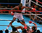 James Buster Douglas - 11x14 Boxing Photo (knocking out Mike Tyson)